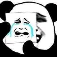 Mỗi ngày vài bức meme về đỗn lì gấu trúc Trung Quốc - Home Facebook