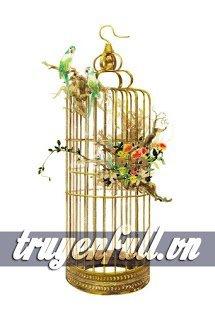 Chim Tước Cùng Lồng Vàng