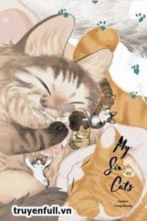 Sáu Con Mèo Tranh Nhau Muốn Nuôi Ta