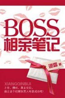 Bút Ký Coi Mắt Của Boss
